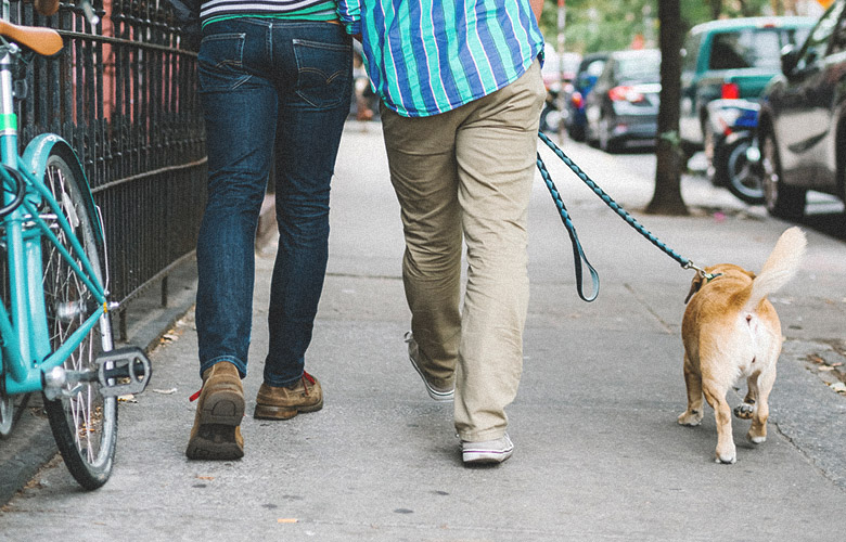 Photograph of two men walking their dog